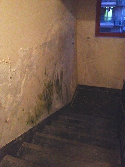The ever growing mold/water stain.
