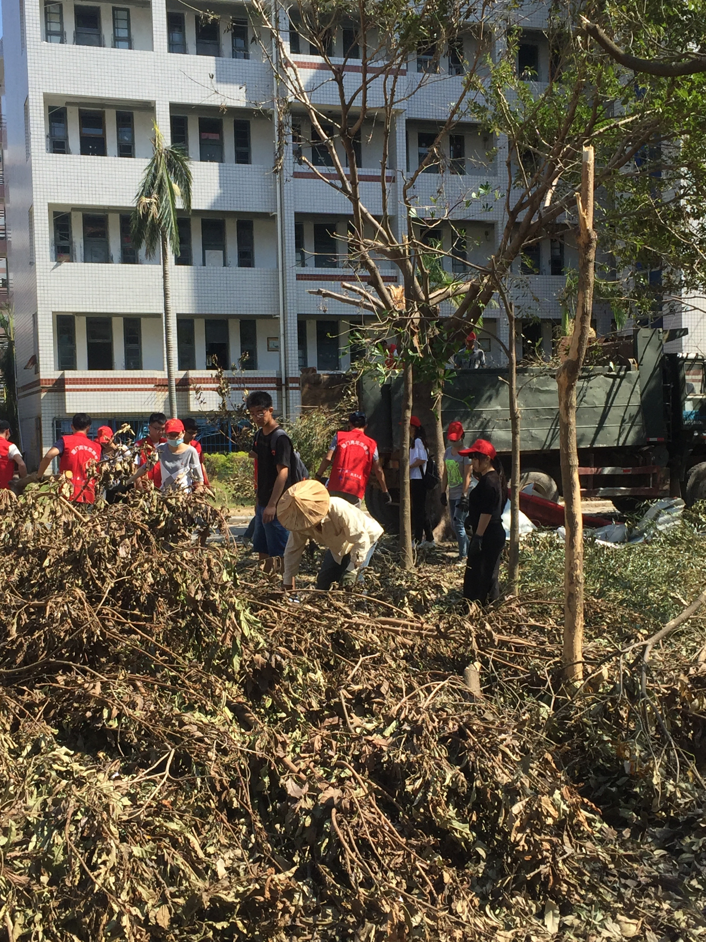 Some volunteer group already had red vests and hats and you could see them all over the campus cleaning up the trees.